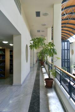 tei-athinas-oikonomologos (16)